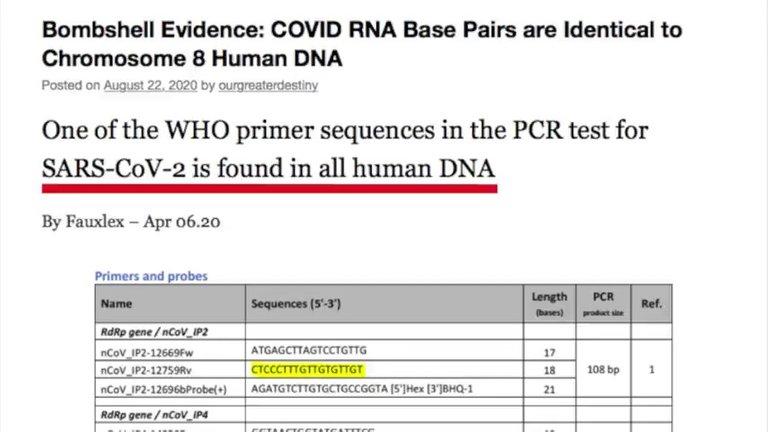 chromosome_8.jpg