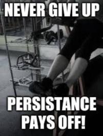 persistance2.jpg