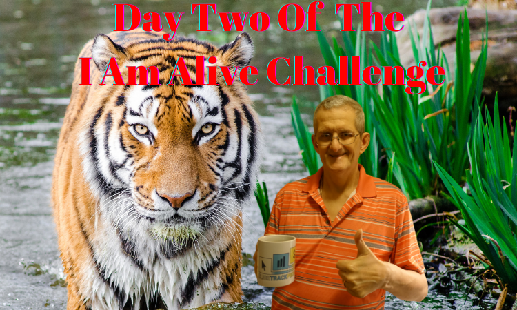 Copy of Day 2 I am alive challenge Blog header.png