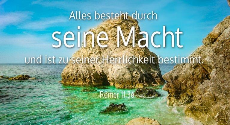 Roemer-11-36_WZ-gr.jpg