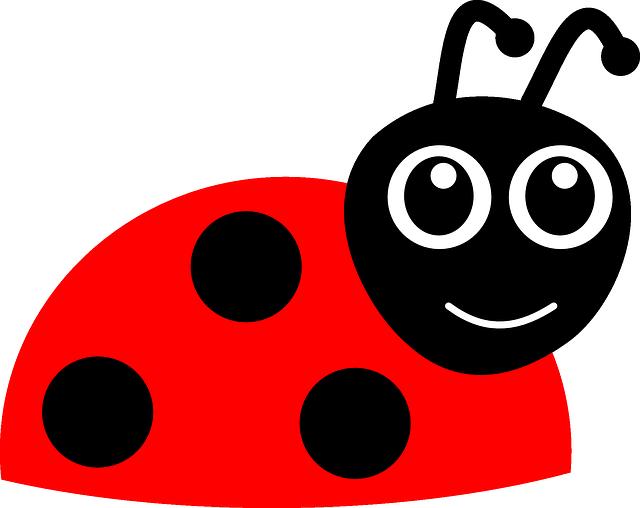 ladybug-152281_640.png