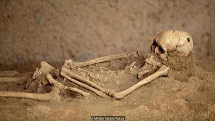 Treppanned Skull.jpg