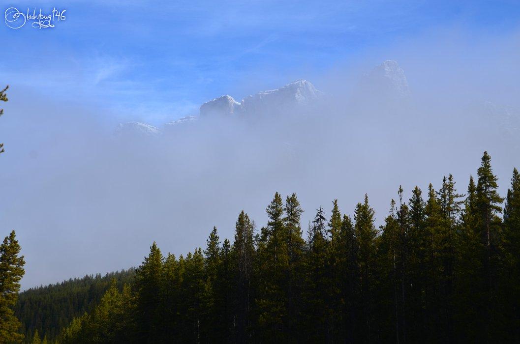 castle mountain5.jpg