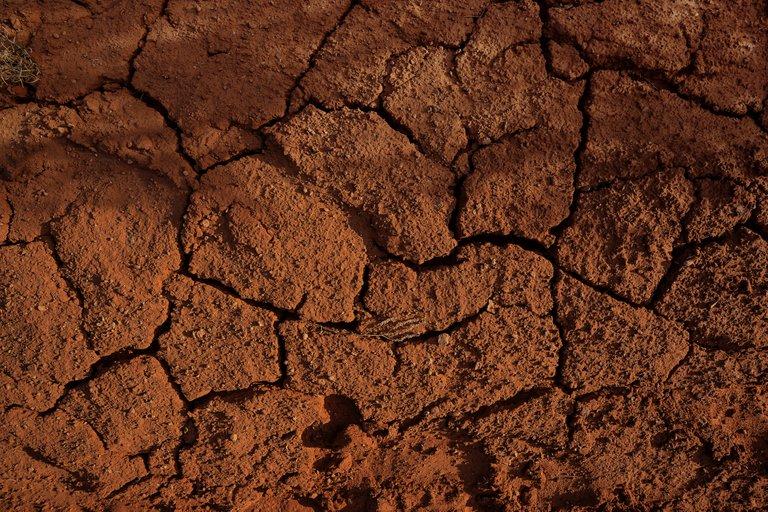 claybanksEdscD_R28bMunsplash.jpg