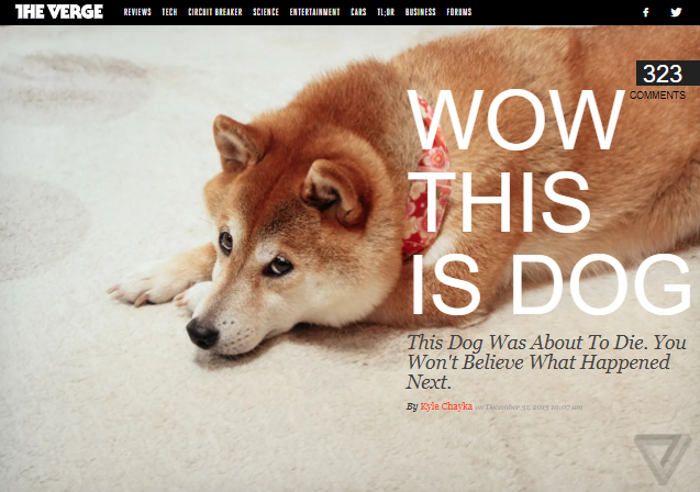 Actual screen capture of cover image from article at THE VERGE