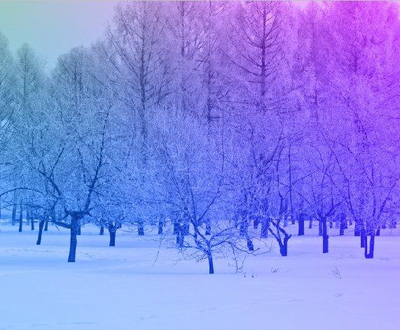 gradient_mixed_7_color.jpg