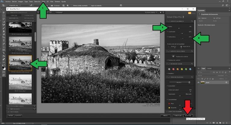 Silver Efex Pro 2.jpg