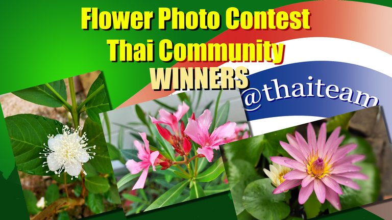 flower_photography_winners_n3_new.png