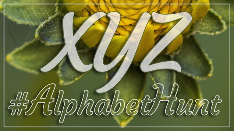 Hive AlphabetHunt - Letter X, Y and Z