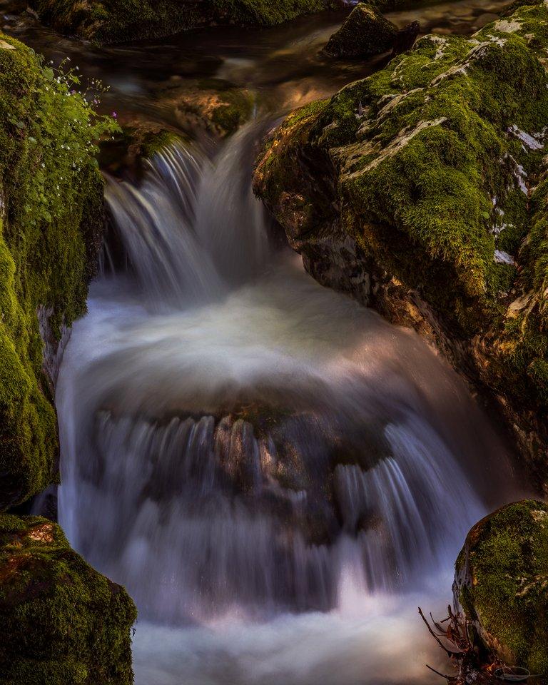 Small Waterfall in Šunikov vodni gaj, Lepena Valley - Slovenia
