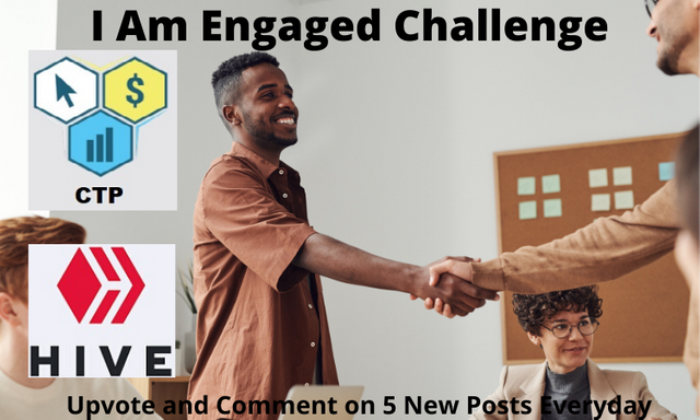 I Am Engaged Challenge (1).png