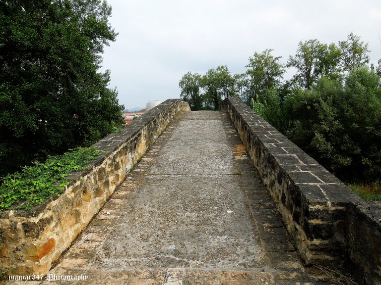 Asturias septiembre 2012 462.jpg