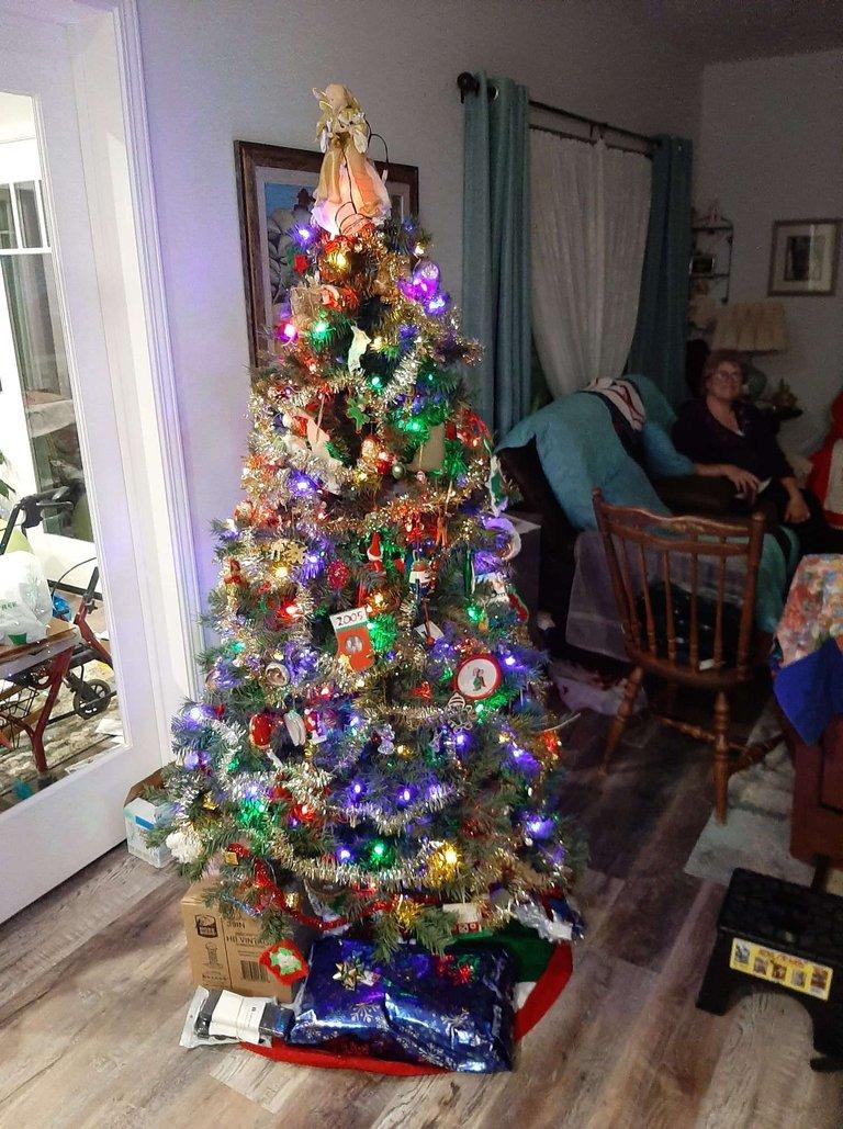 Wolff Family Christmas Tree.JPEG