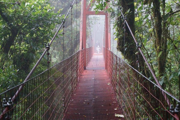 Costa Rica - Days 3-6 - San Jose to Monteverde Cloud Forest
