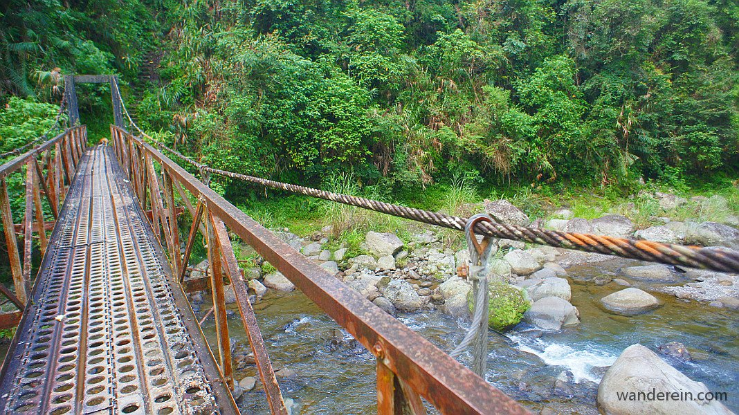 the hanging bridge, the only path that the dogs were careful of