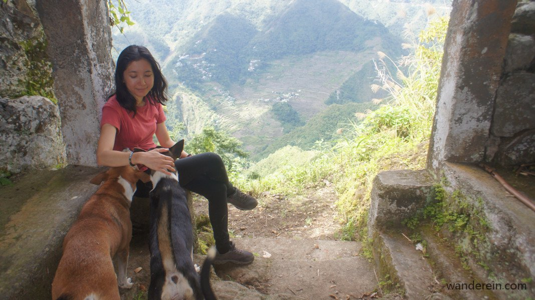 Hanging out with my Batad tour guide dogs