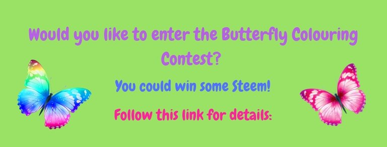 Butterfly Colouring Contest header.jpg