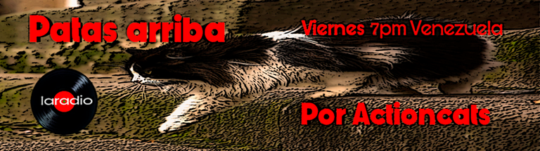 Banner_patas_Arriba.png