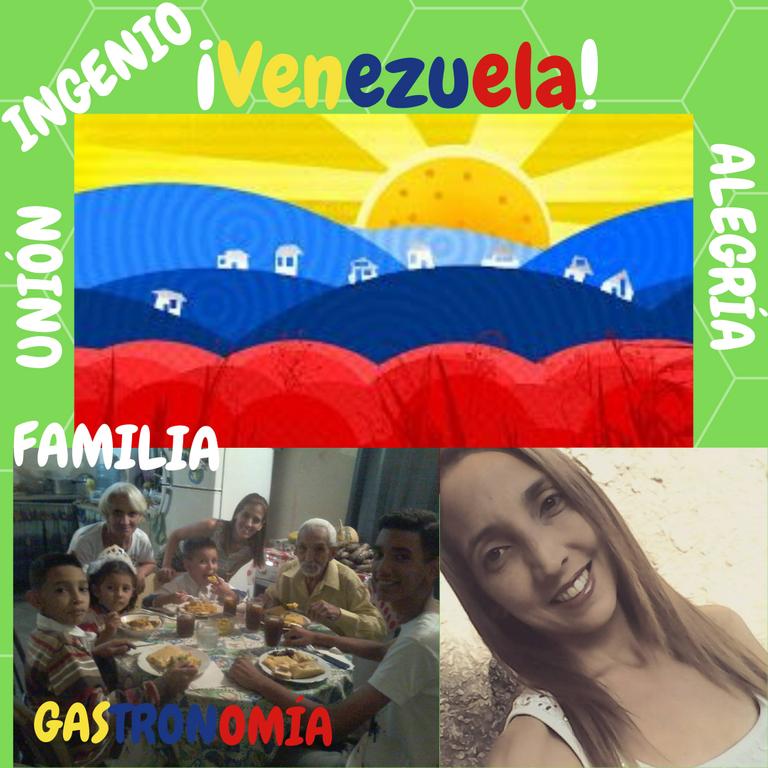 ¡Venezuela!.png