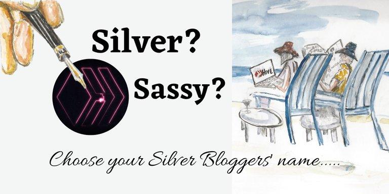 Sassy_Silver_Bloggers_name.jpg