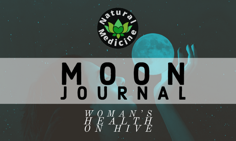 MOON JOURNAL.png