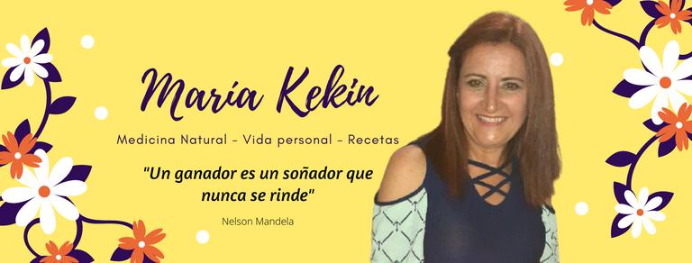 banner_maria_kekin_hive.png
