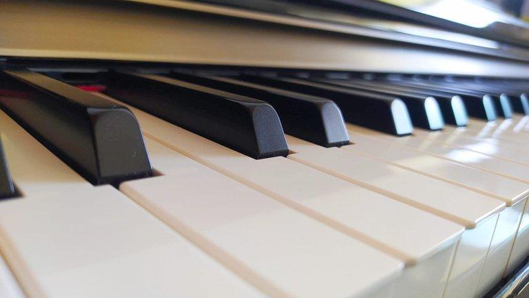 pianokeys.jpeg