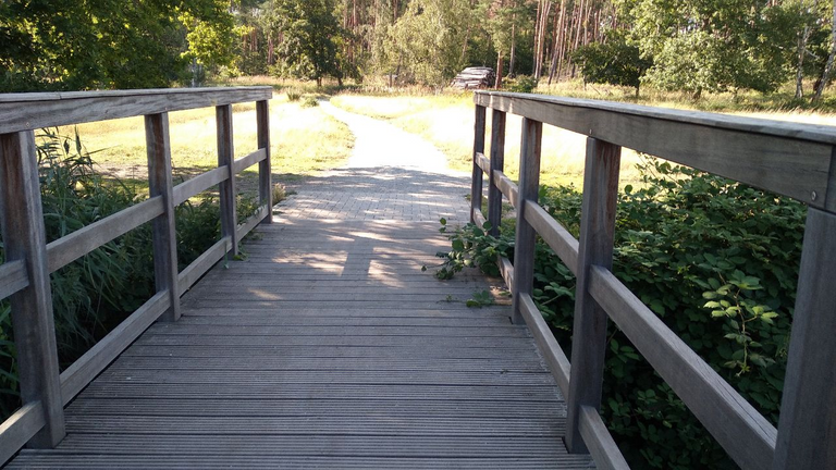 Auf dem Rundweg (3) - Brücke