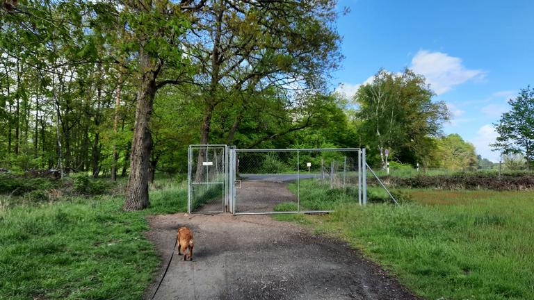 Eingang zur Hundewiese - Das Gatter