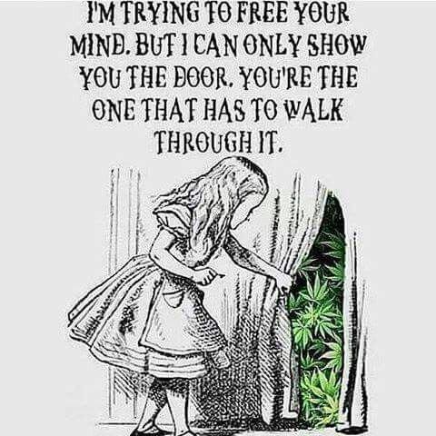Yes!!! #inspiration #MoveMeBrightly #herbisthehealingofthenations.jpeg