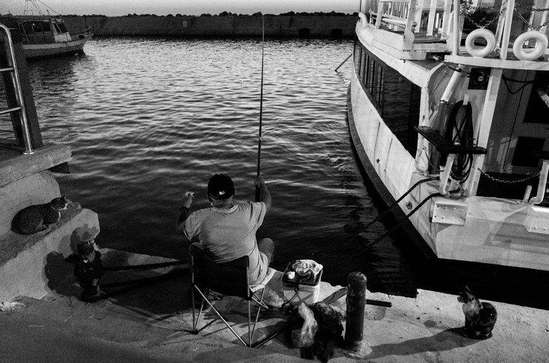 Yafo_port_fishing_2020_by_Victor_Bezrukov.jpg