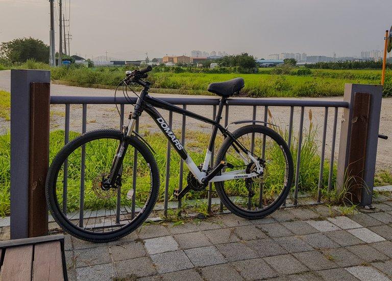 new bike 1.jpg