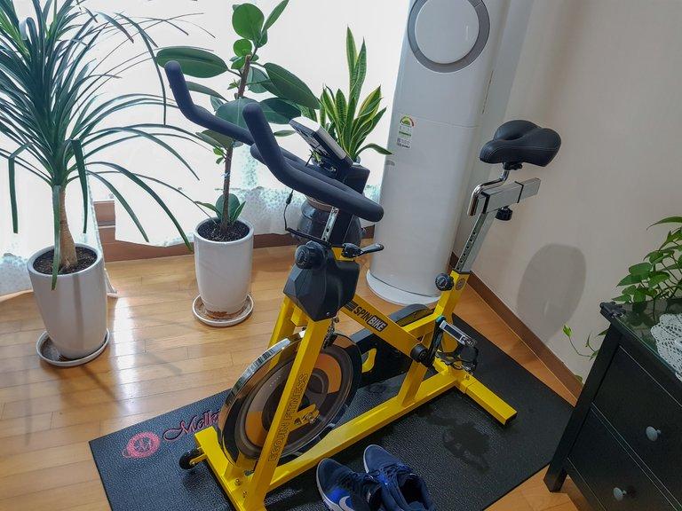new bike 4.jpg
