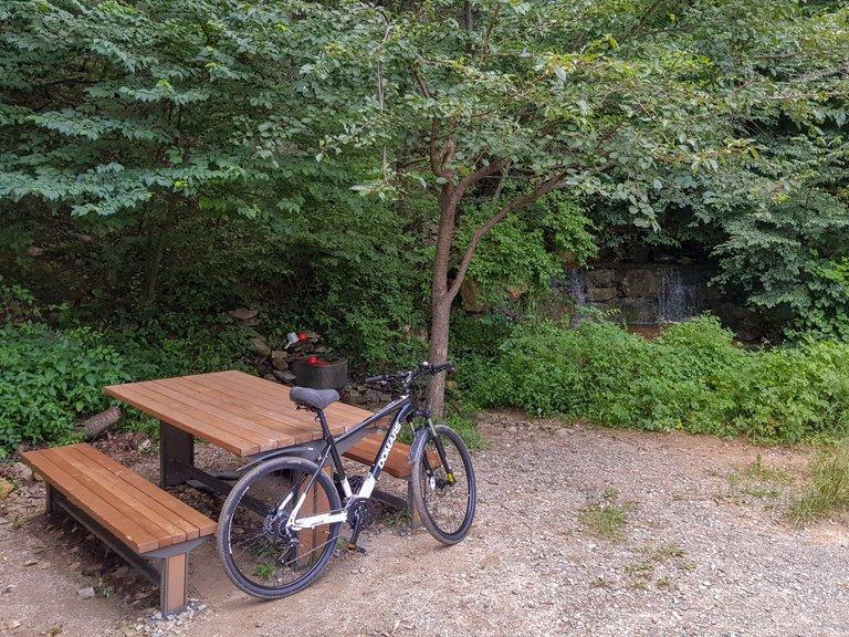 new bike 7.jpg