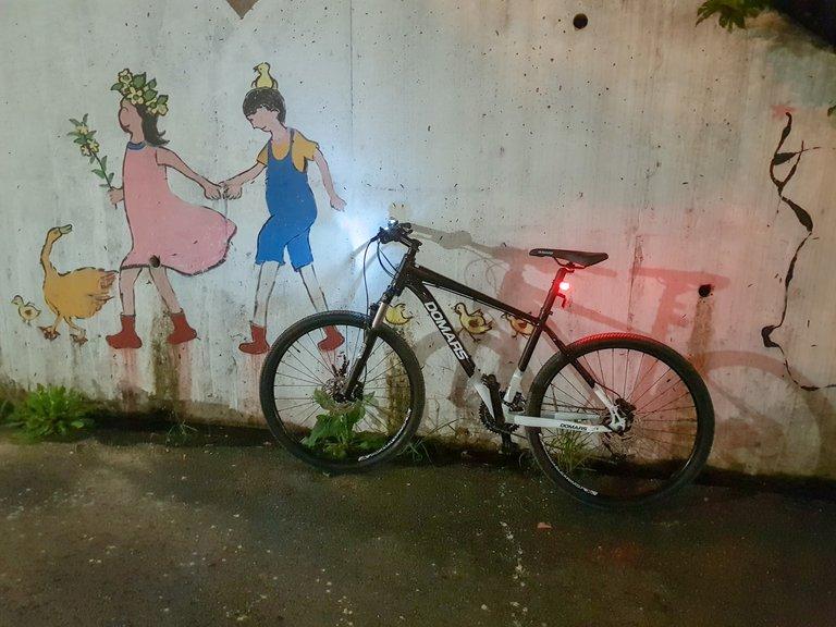 new bike 3.jpg