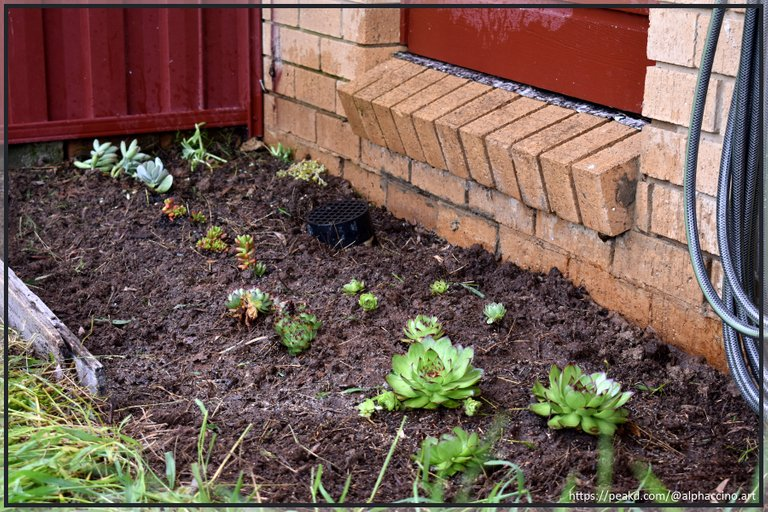 I've even repurposed some old fence palings