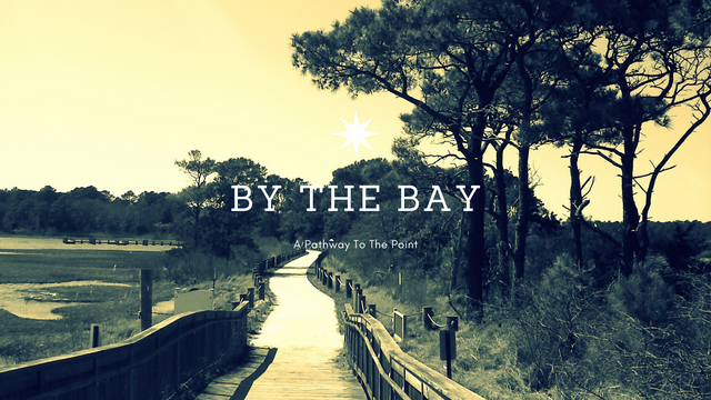 by the bay.png