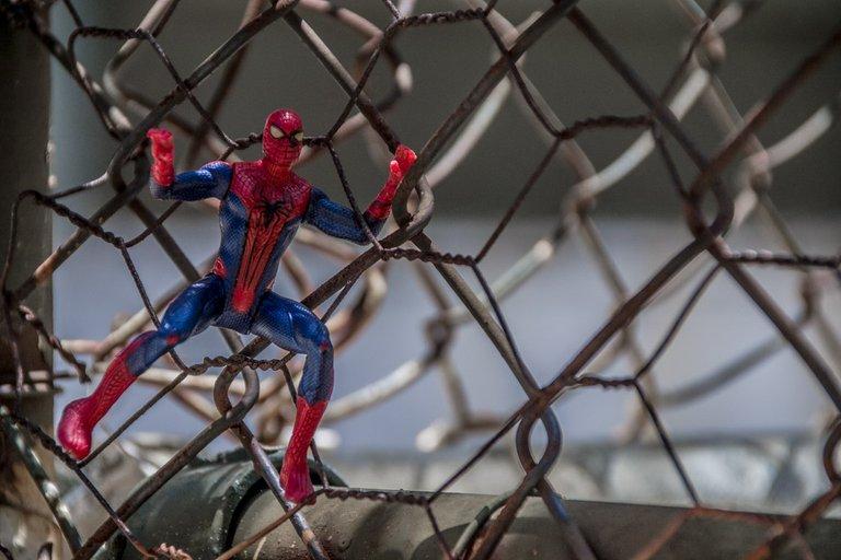 spiderman5.jpg