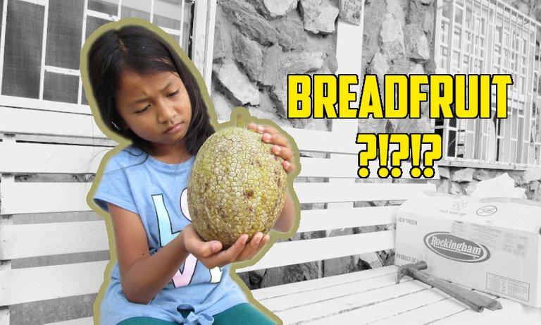 BreadfruitThumb.jpg