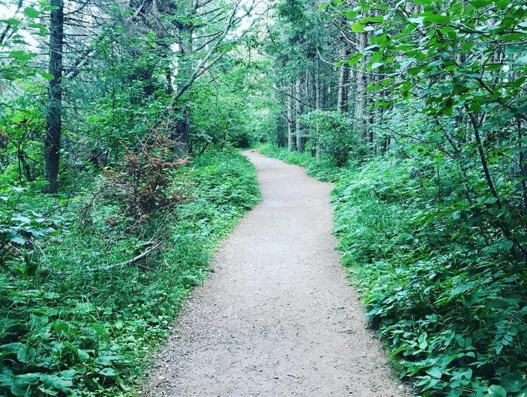 path palisade.jpg