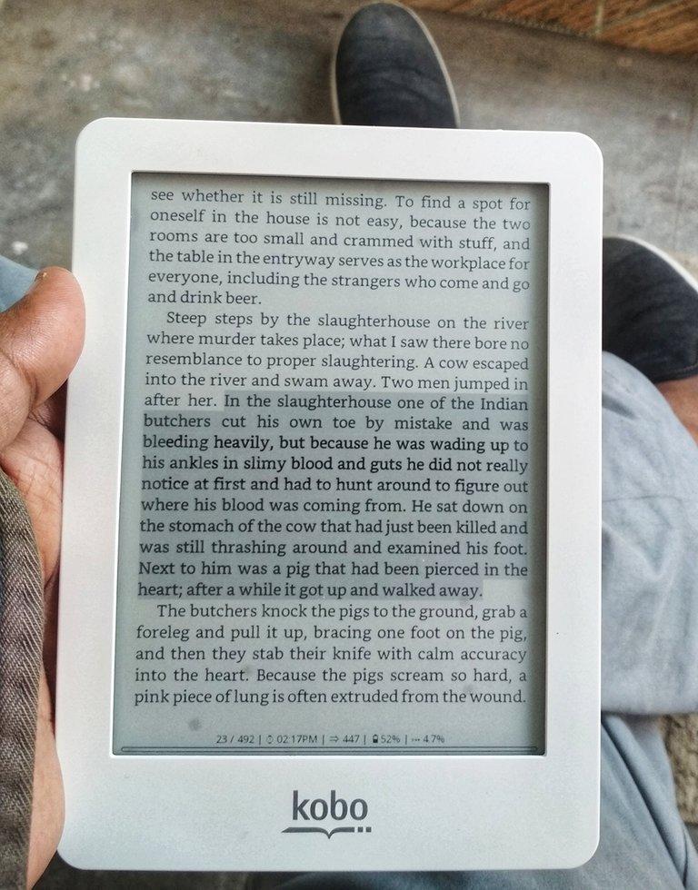 I read on Kobo e-reader, photo taken by me.