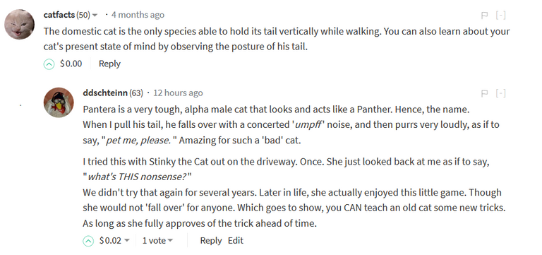 Stinky the Cat Epitaph Pulling the tail.PNG