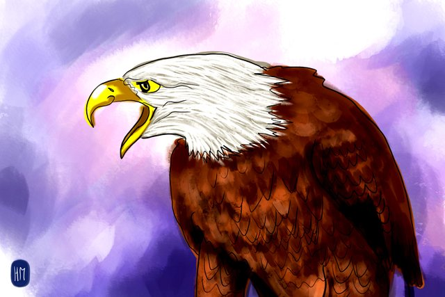 eagle(345).jpg