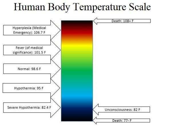 temperature scale human body.jpg