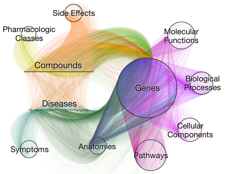 Visualization of Hetionet: a network that condenses decades of biomedical research into 11 node types and 24 edge types. Learn more at https://het.io