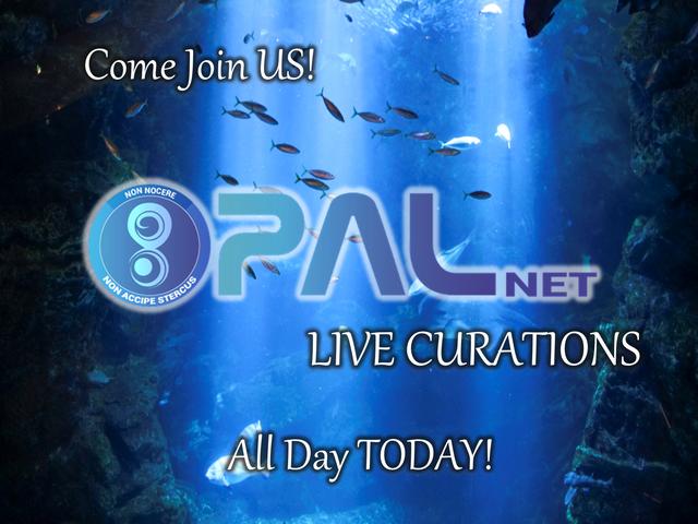PALNET curation live.png