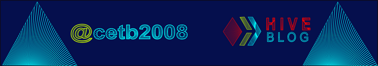banner-cetb2008.png