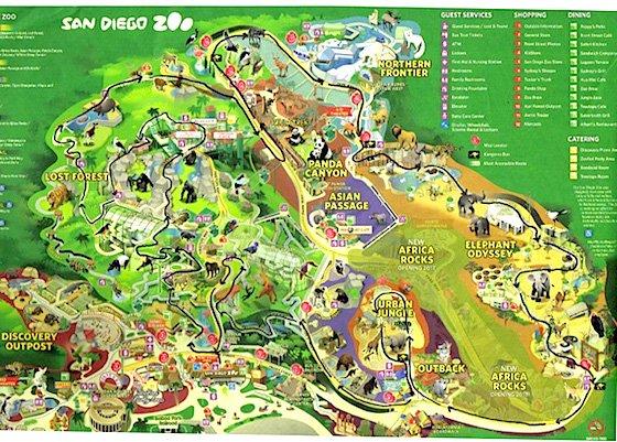 zoo-route (1).jpg