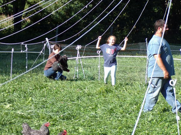 Freezer Camp  catching roosters Phoebe, Autumn, Josh crop Sept. 2020.jpg