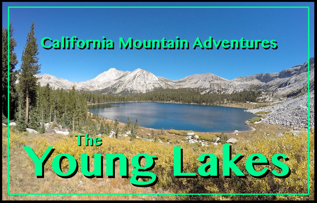 Young Lakes cover.png
